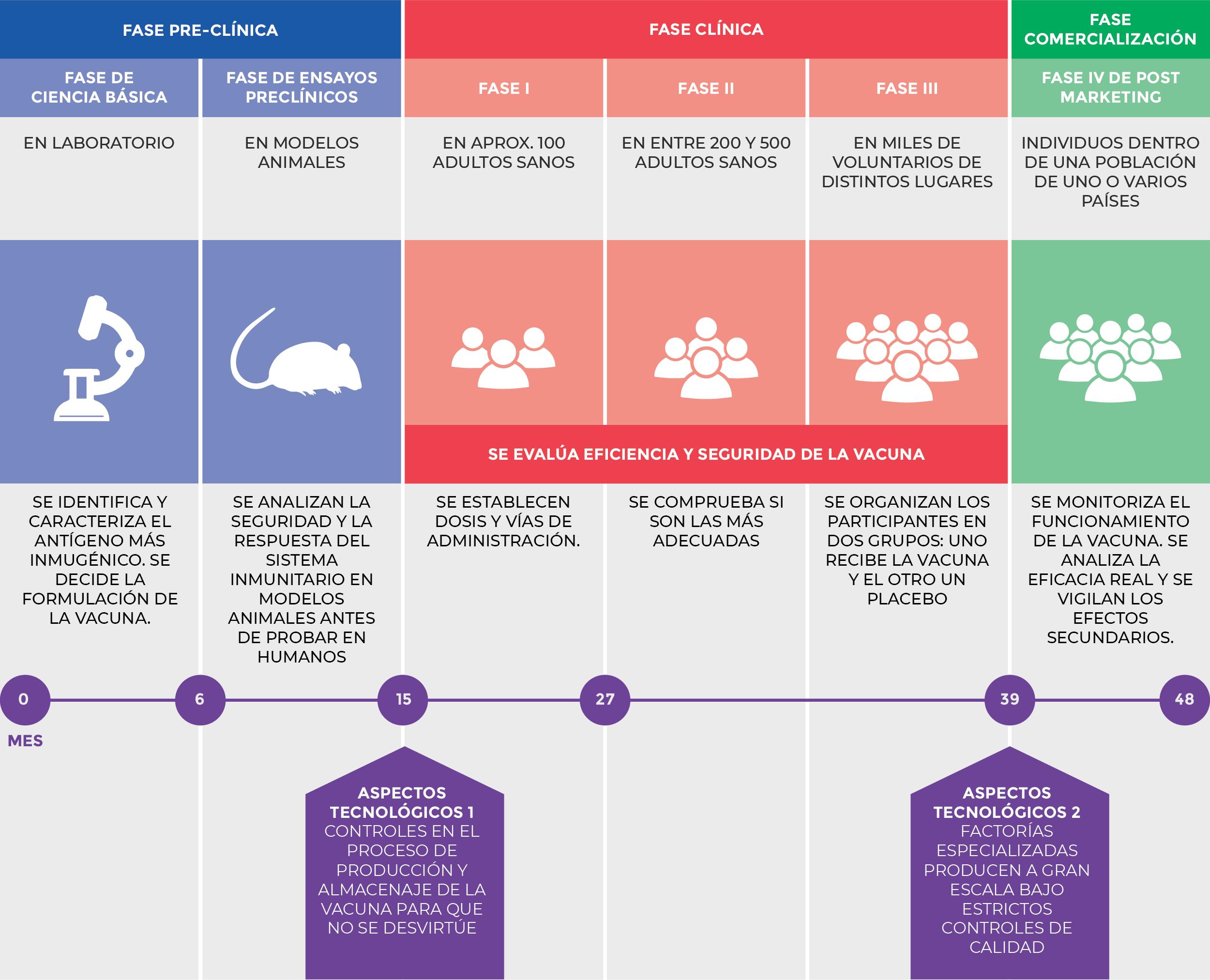 Gráfico etapas del desarrollo de las vacunas